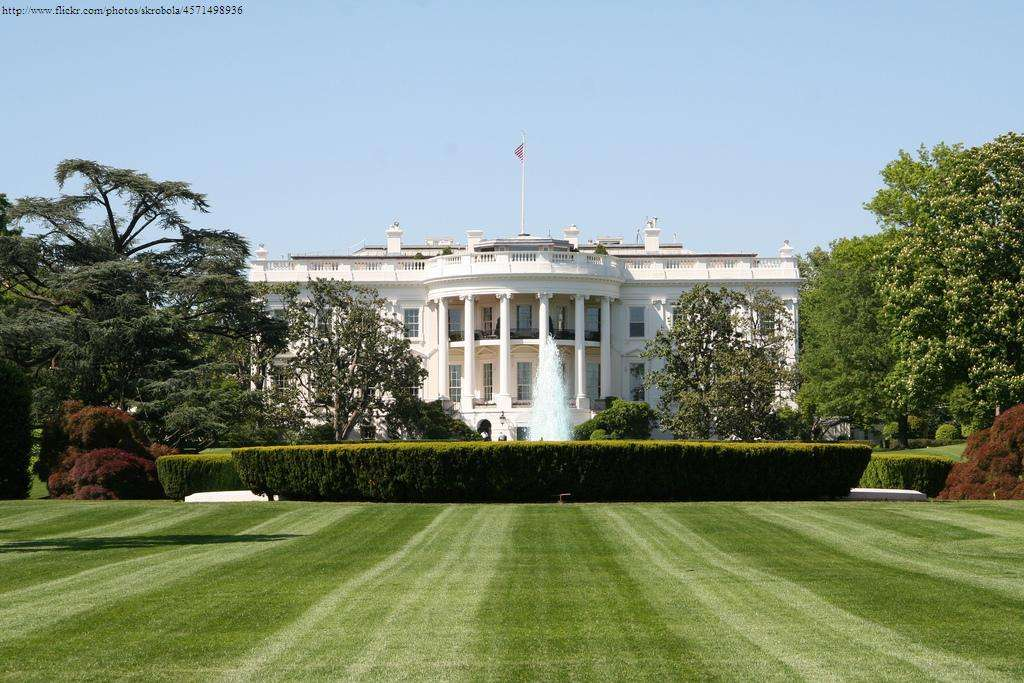 The Presidential Election and The Local Real Estate Market