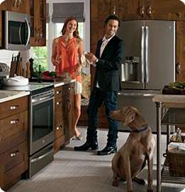 The End of Stainless Steel Appliances?